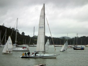 Opua Cruising Club Wednesday night racing