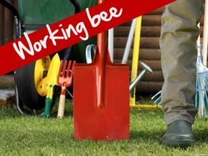 Working Bee big